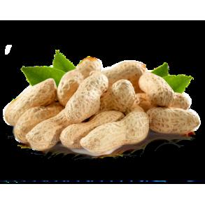 Inshell Peanut