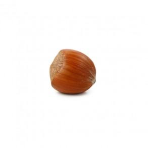 Hazelnut Inshell